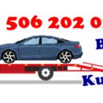 bilgin-oto-kurtarma-logo-600